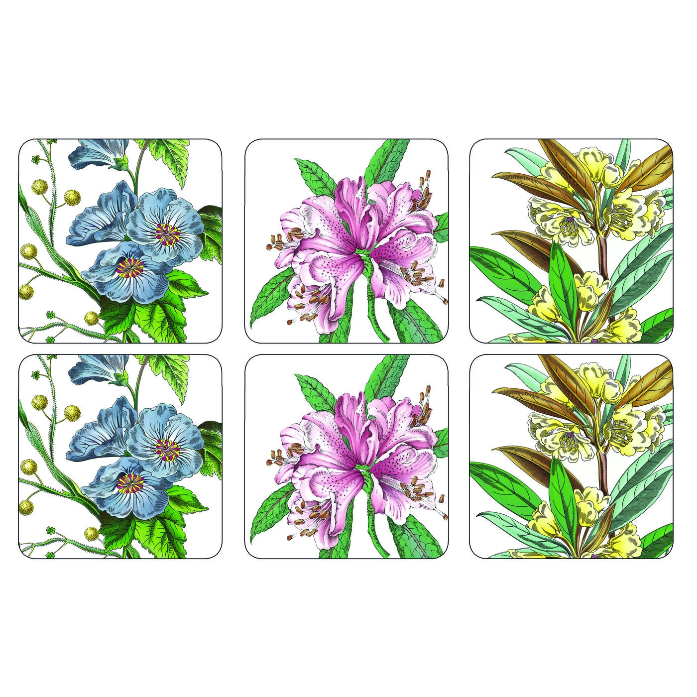 Pimpernel Stafford Blooms Coasters Set of 6 image number 0