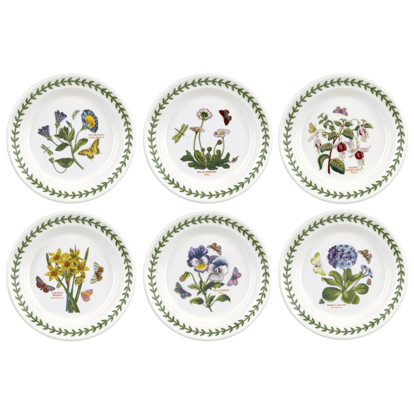 Botanic Garden 6.5 Inch Side Plate Set of 6 (Assorted Motifs) image number 0