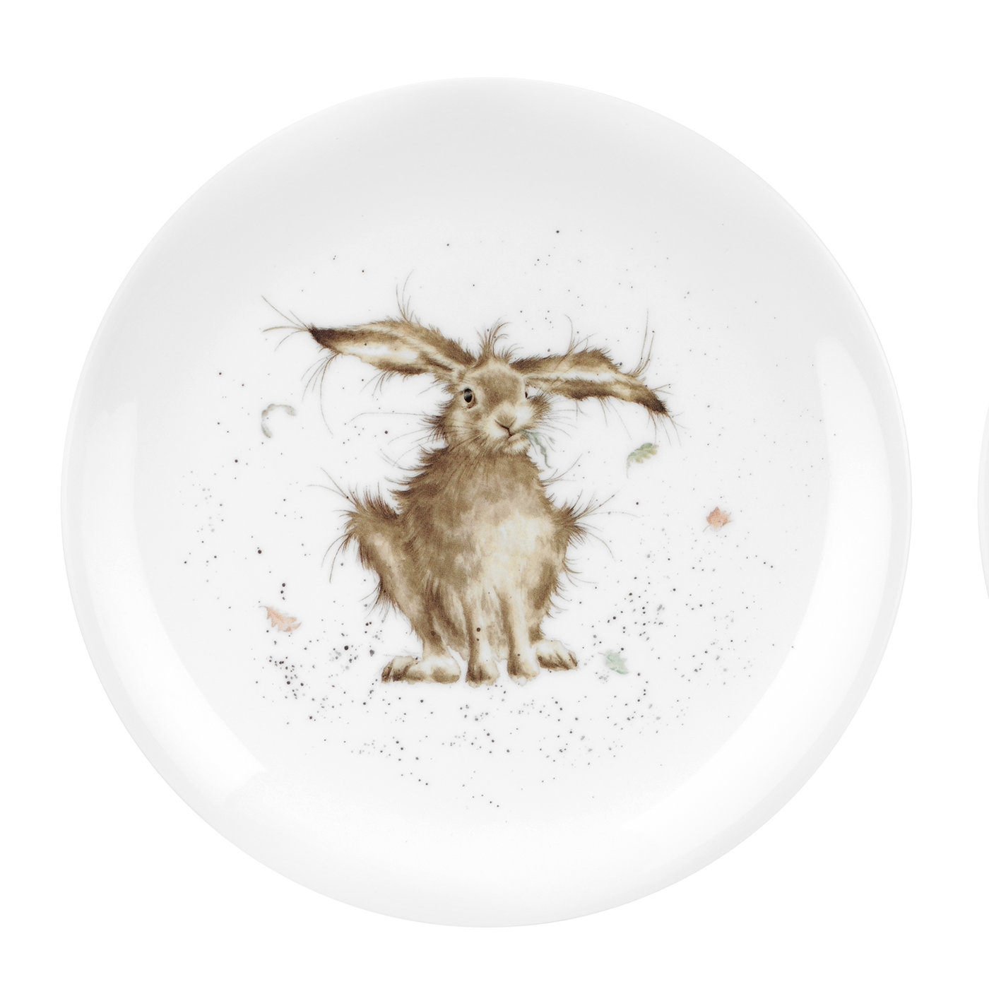 "Royal Worcester Wrendale Designs Single Hare Brained (Hare) Fine Bone China 8"" Plate image number 0"